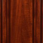 Rembrandt Door